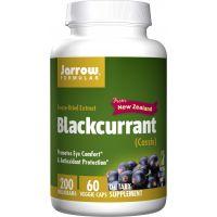 Blackcurrant - Czarna porzeczka 200 mg (60 kaps.) Jarrow Formulas
