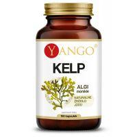 Kelp (naturalny Jod) - Morszczyn Pęcherzykowaty (100 kaps.) Yango
