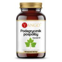 Podagrycznik pospolity - ekstrakt 330 mg (90 kaps.) Yango