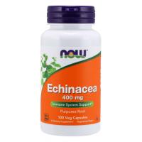 Echinacea - Jeżówka Purpurowa (100 kaps.) NOW Foods