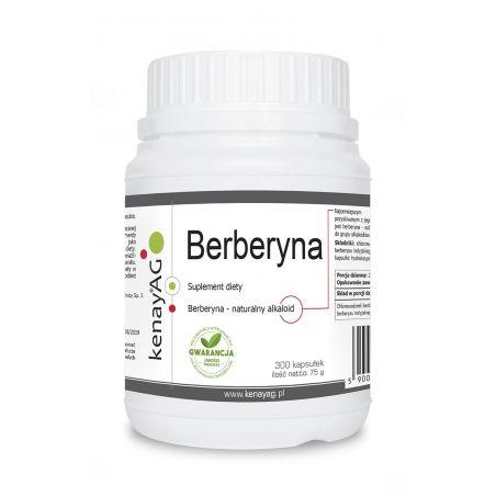 Berberyna 250 mg (300 kaps.) KenayAG