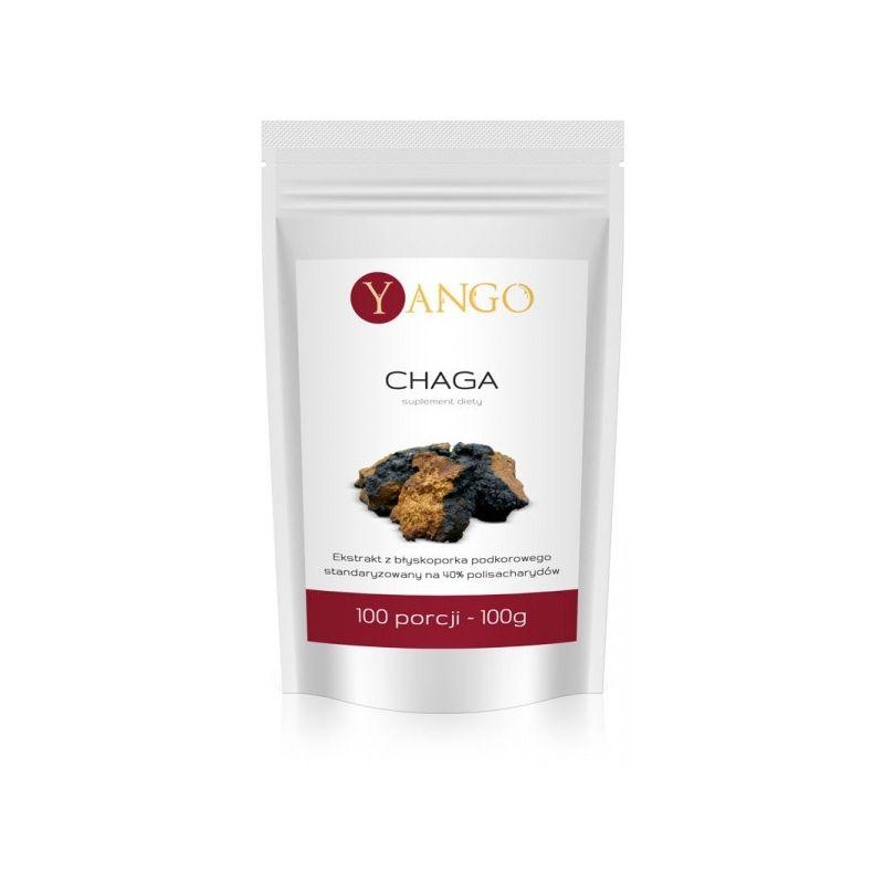 Grzyb Chaga - ekstrakt 40% polisacharydów (100 g) Yango
