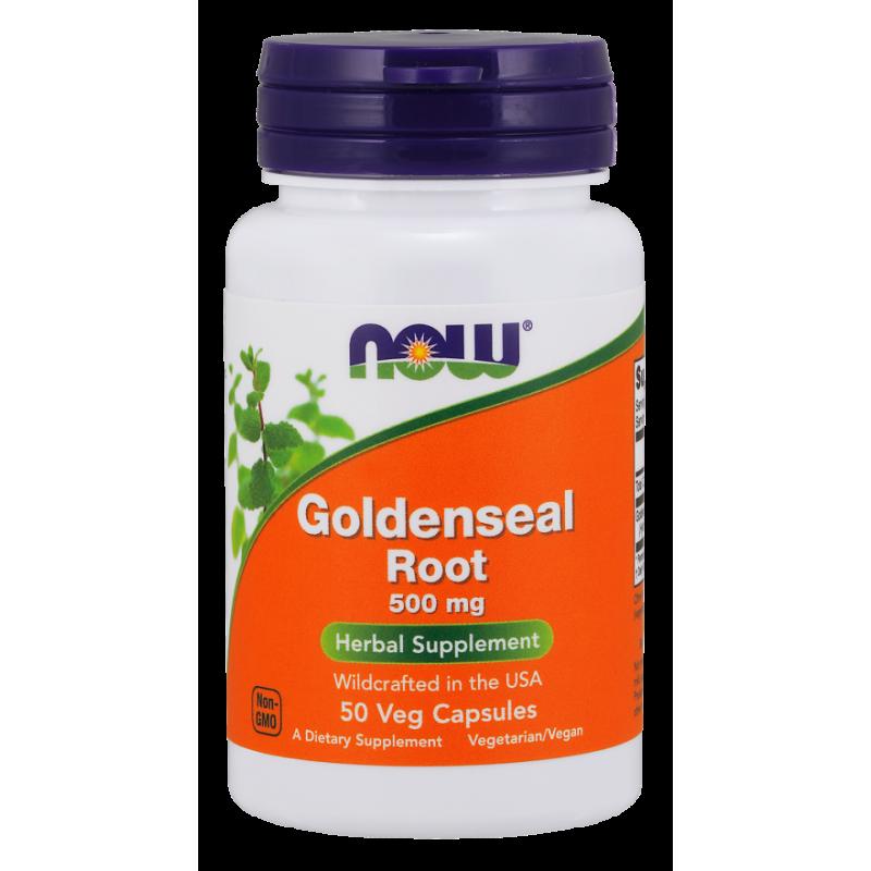 Goldenseal Root - Gorzknik Kanadyjski 500 mg (50 kaps.) NOW Foods