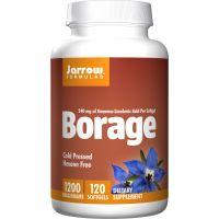 Borage GLA 240 - Olej z Ogórecznika 1200 mg (60 kaps.) Jarrow Formulas