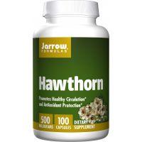 Hawthorn 5:1 - Głóg Dwuszyjkowy 500 mg (100 kaps.) Jarrow Formulas