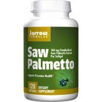 Saw Palmetto - Palma Sabalowa 160 mg (120 kaps.) Jarrow Formulas