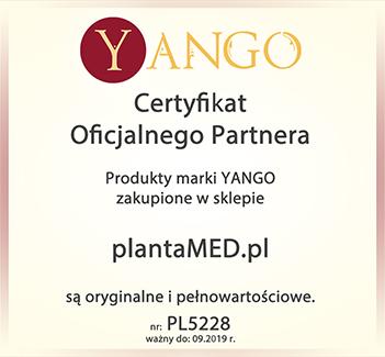 Oficjalny dytrybutor produktów marki Yango - pełna oferta!